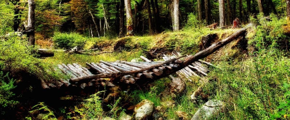 nature_landscapes_500